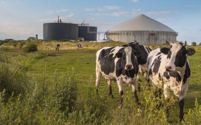 Le biométhane : une énergie d'avenir ?